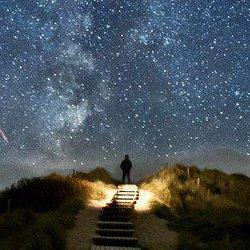 Man stairs moonlight