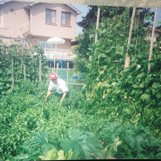 Dad garden
