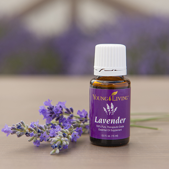 Young Living Lavender_550x550