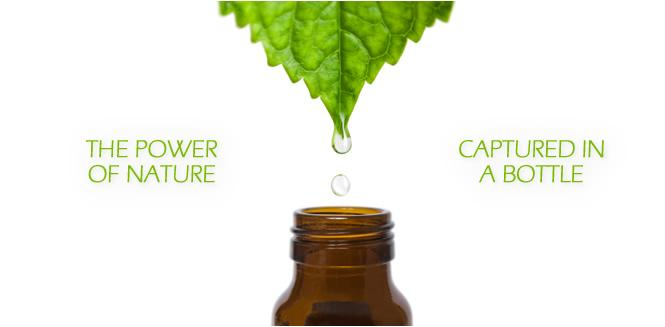 Young Living Power of Nature