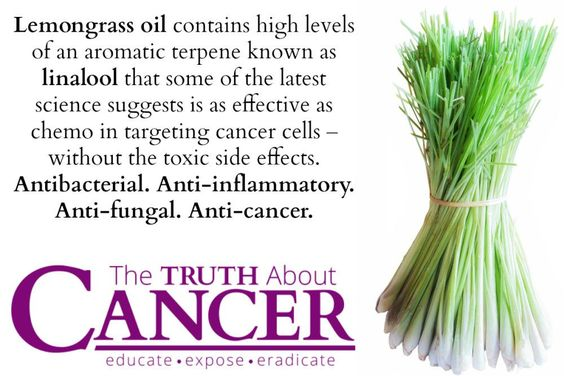 Lemongrass cancer